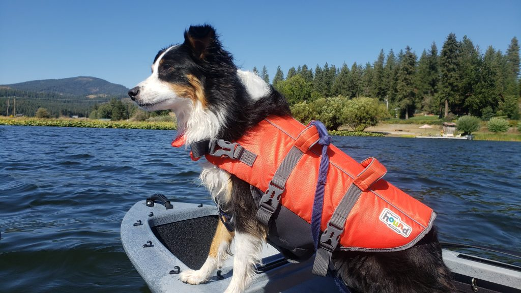 picture of Mika in a Kayak with a life vest on